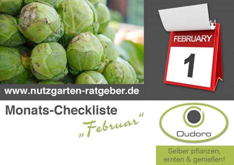Der Nutzgarten Ratgeber für den Monat Februar