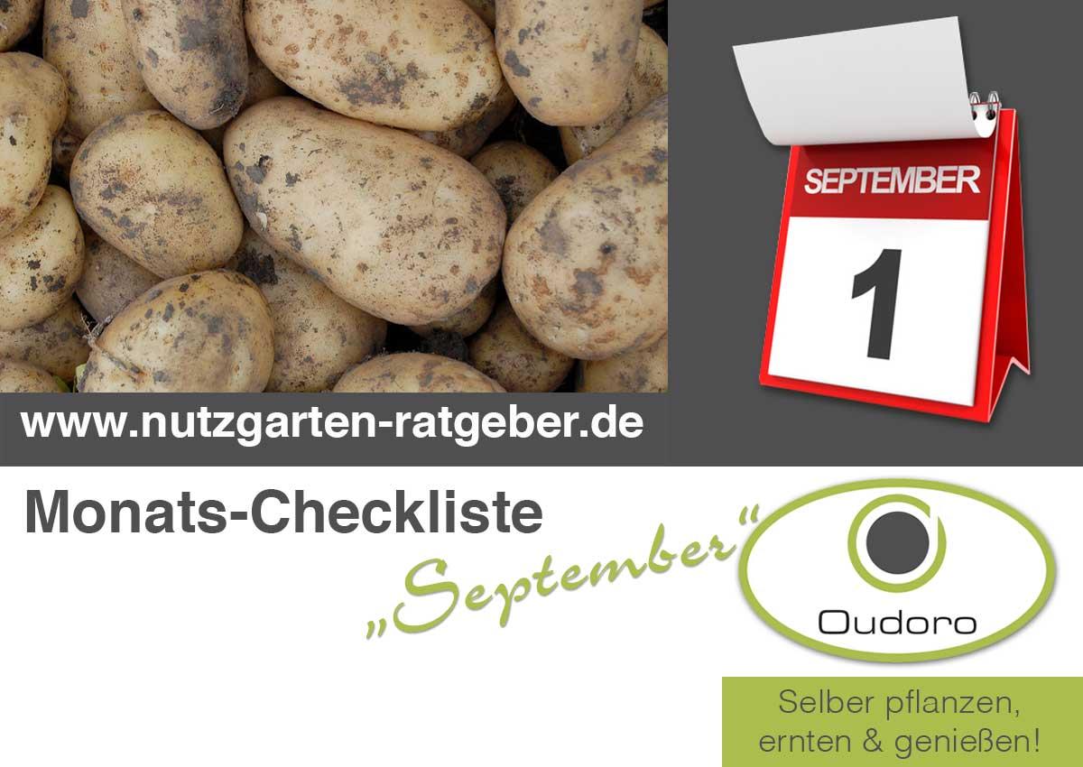Der Nutzgarten Ratgeber für den Monat September