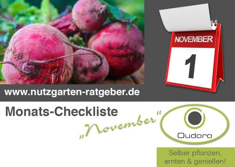 Der Nutzgarten Ratgeber für den Monat November