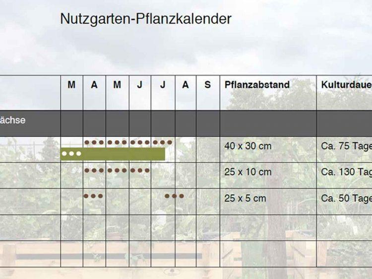 Pflanzkalender